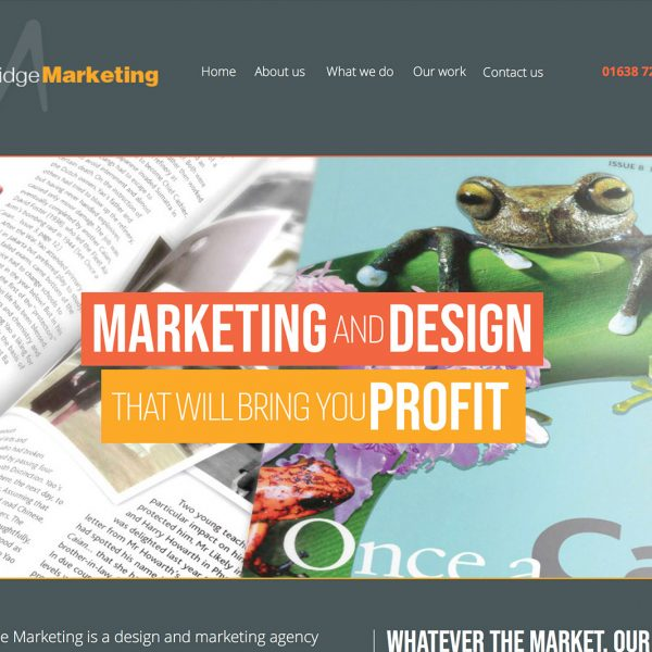Cambridge Marketing Website